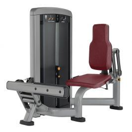 Life Fitness Insignia Calf Extension