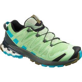 Dámské běžecké boty Salomon Salomon XA PRO 3D V8 zelené