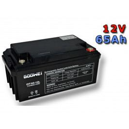 Trakční gelová baterie GOOWEI OTL65-12 65Ah