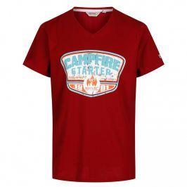 Pánské triko Regatta Calton červená Velikost: XXL / Barva: červená